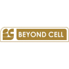 Beyond Cell (1)