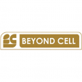 Beyond Cell