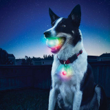 Nite Ize GlowStreak LED Ball + SpotLit LED Collar Light Combo - Disc-O